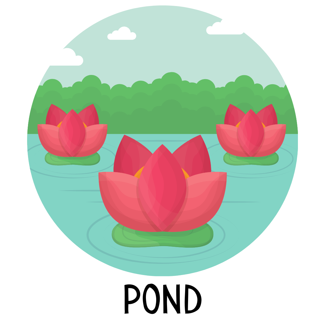 Pond Storytime