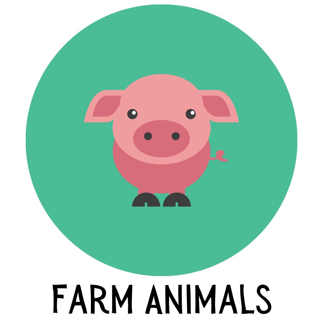 Farm Animals Storytime